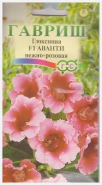 Глоксиния Аванти F1 Нежно-розовая