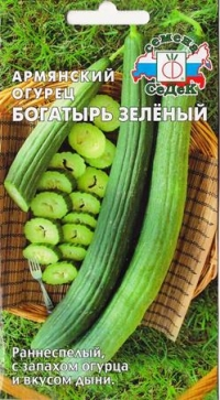 "Дыня Армянский огурец ""Богатырь зеленый"""