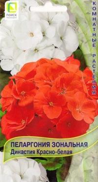Пеларгония Династия красно-белая